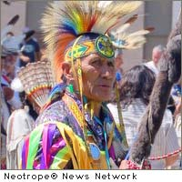 Native American fine arts
