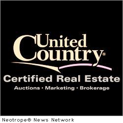 D.Basile Real Estate LLC