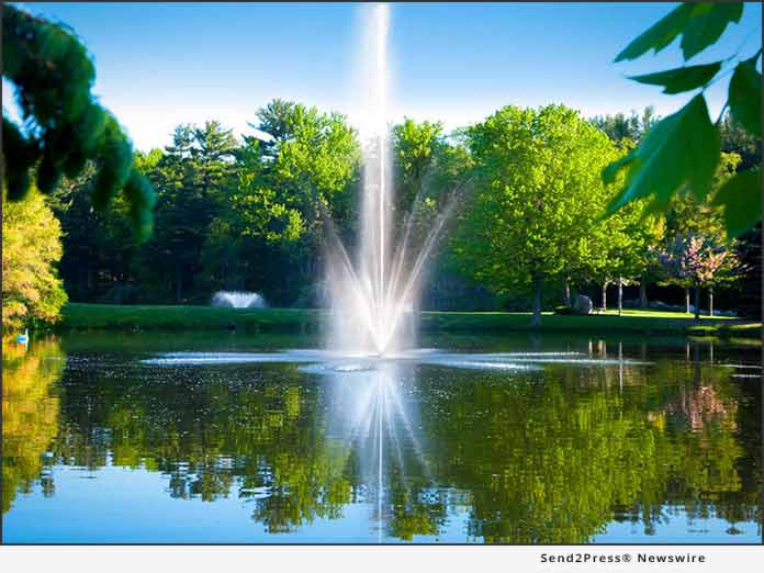 For A Healthy Pond And Aquatic Environment Discount Pumps In